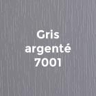 09_Bois-Peint_Gris-Argente_7001